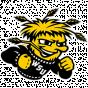 Wichita St NCAA D-I