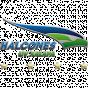 Halcones Xalapa