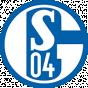 Schalke Germany - ProA