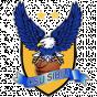 Sibiu FIBA Europe Cup Qualifying