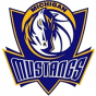 Michigan Mustangs