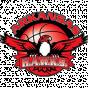 Arkansas Hawks, USA
