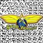 Starwings Birsfelden Switzerland
